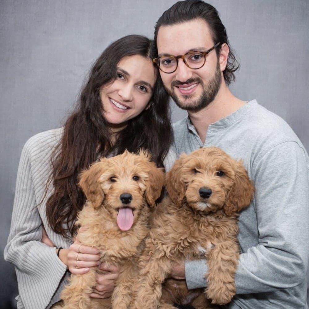 Goldendoodles Doggo Insurance