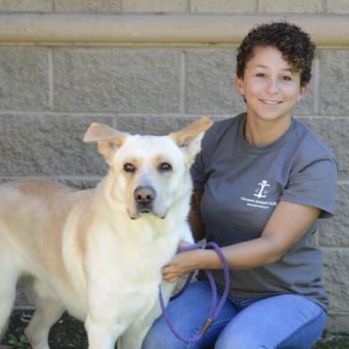 Carolyn - CPDT - KA Dog Trainer